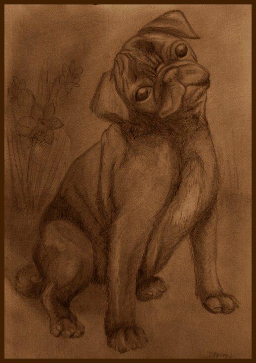 Obrazy a kresby